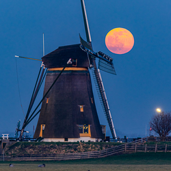 Volle maan boven Lisse
