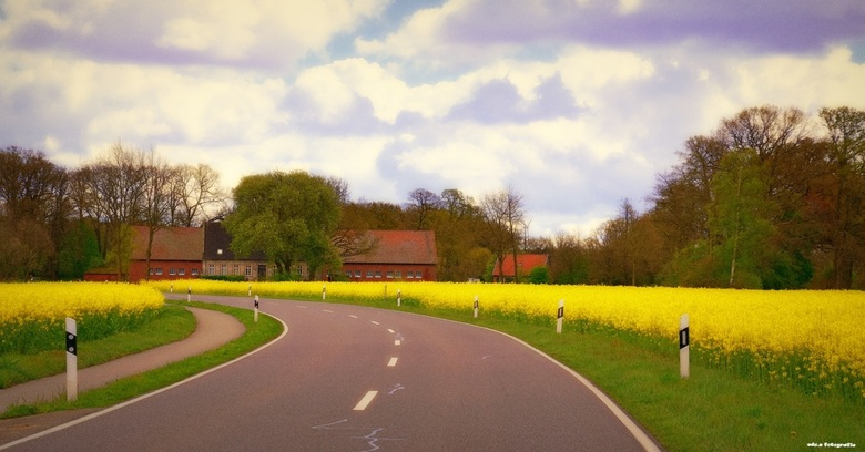 bochtige weg. - Emsland in voorjaars kleuren.