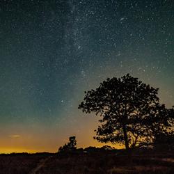 Een nacht op de heide