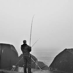 Visser op pier 5