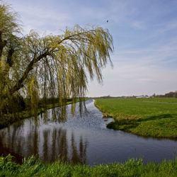 Polder bij Reeuwijk