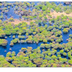 Uitzicht op de Ocavango delta