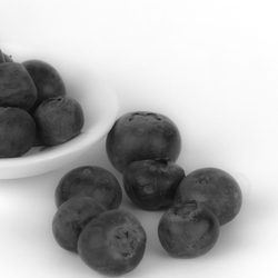Blueberry_BW.jpg