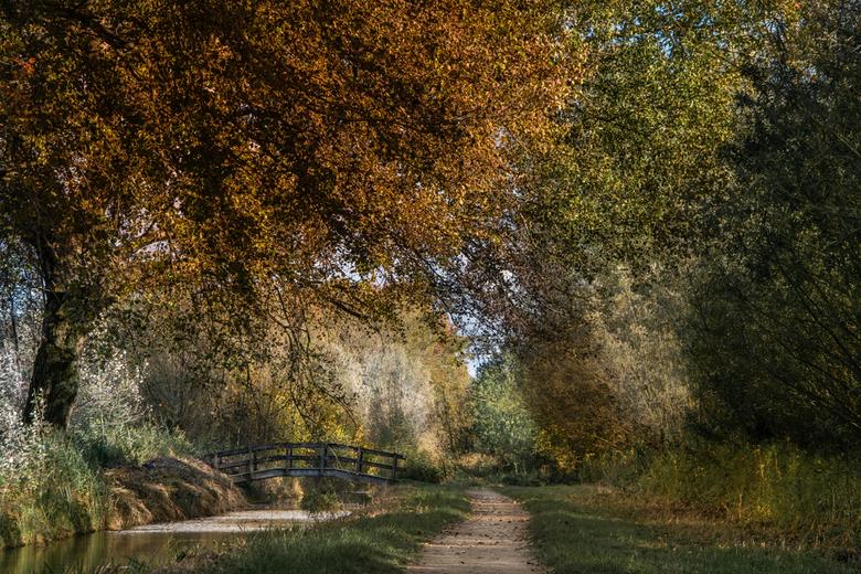 Oud Hollands - Wat is de herfst toch prachtig!