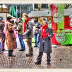 gemeenteraadcampagne 2010 - groenlinks