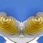 geel en blauw 01