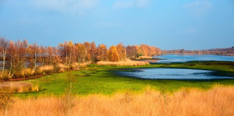 Bargerveen - zichtbaar hoogveen - Door de droge zomer 2018 is (te) veel water verdampt uit het Bargerveen. Delen die normaal onder water staan, zijn n