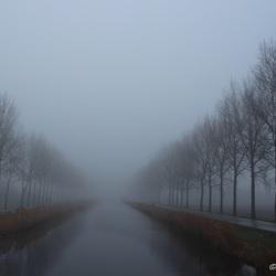 Dag vol mist
