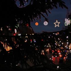 Kerst-koop gekte...(in groot mooier)