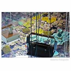 aquarium Burgers Zoo van boven-af
