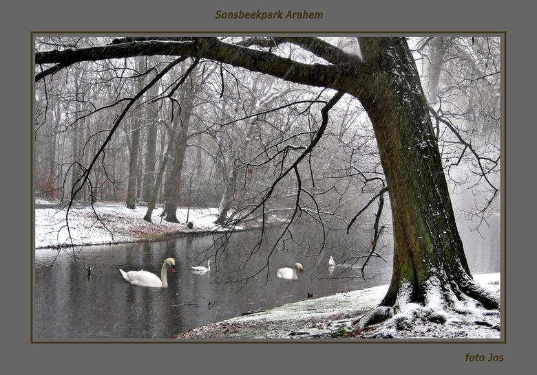 Sneeuw en mist - Afgelopen dinsdag, sneeuw en zware mist in Sonsbeek park in Arnhem. In het groot bekeken zie je de sneeuw vallen. Ieder bedankt voor
