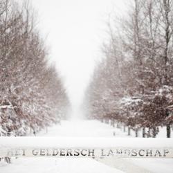 winters Geldersch landschap