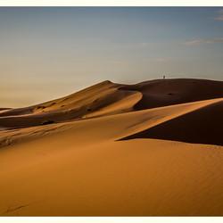 Aan de liefde en de trouw van een kameel
