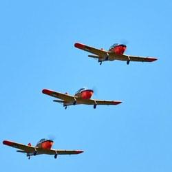 WoF-FokkerS11