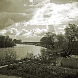 Gat van den Ham, een kreek net buiten de Biesbosch