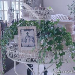 2017 Jeanne d'Arc Living showroom