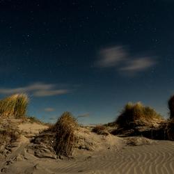 Schiermonnikoog, duinen bij maanlicht