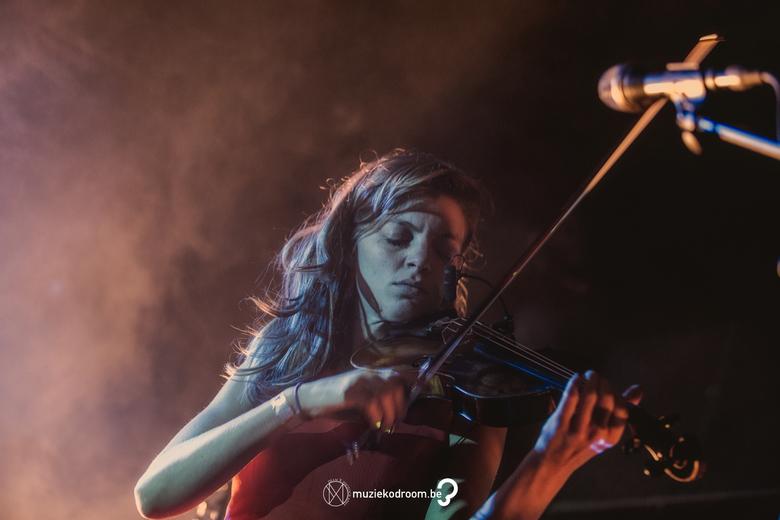 Spinvis - De violiste  van Spinvis had men volle aandacht. Wat een prachtinstrument is het toch.