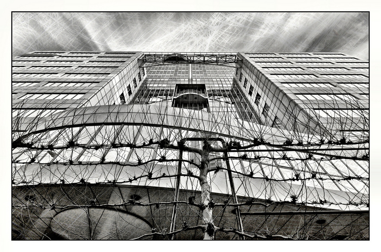 R-dam - z/w-hdr-texture