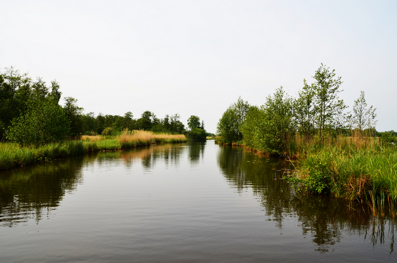 """Giethoorn 2 - Een rondje met de boot op het Giethoornse water...<br /> <img  src=""""/images/smileys/wilt.png""""/>"""