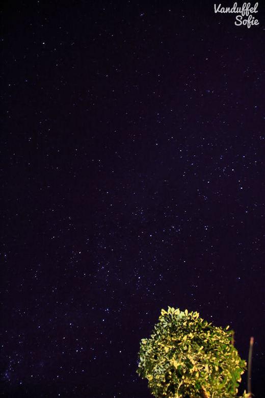 To the stars and beyond - In Zuid-Afrika heb ik de allermooiste sterrenhemels gezien (tot nu toe). Daarnaast is er niet zo veel lichtvervuiling zoals