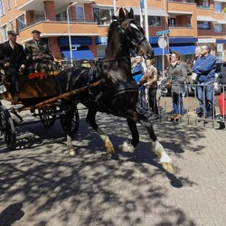 20150427   145825  Koningsdag Ringsteken sGravenz  2e plaats 27april 2015