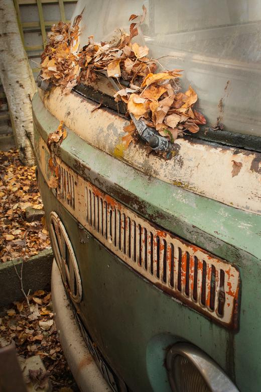 autumn oldtimer - Een oude volkswagenbus die onder de herfstbladeren tussen zijn rottende maatjes ingeparkeerd staat om te wachten op zijn beurt als o