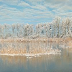 Winter.......