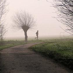 tegenlicht ,sportief in de mist