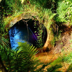 Verscholen tunnel in de natuur