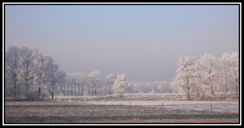 """Winters landschap - afgelopen zaterdag (22-12) zeer mooie natuur met geweldige """"ijsbomen"""" Vooral het vroege zonlicht erop was geweldig om te"""