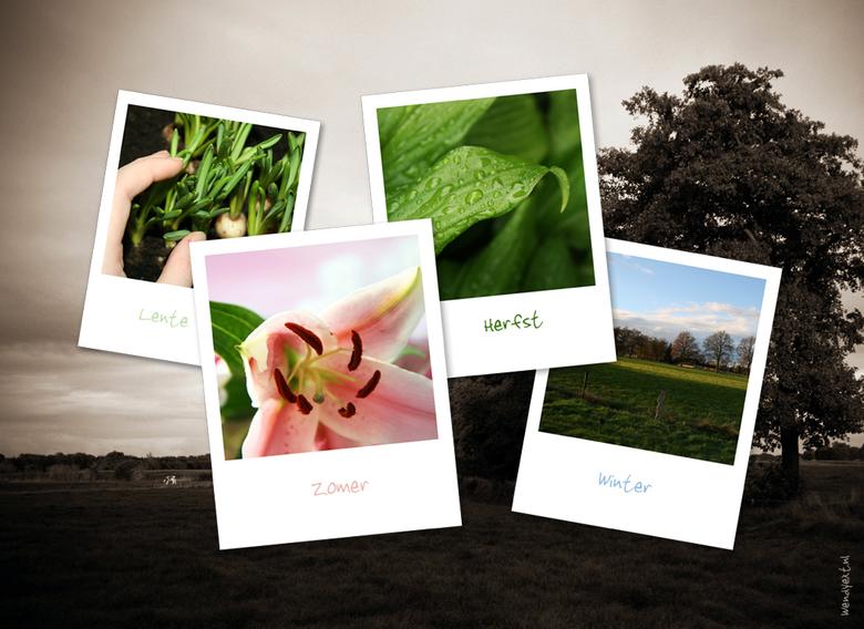 4 Seasons 2008 - Al een tijdje met de gedachte in mn hoofd om een compilatie te maken van de seizoenen. Nu maar eens ten uitvoer gebracht...
