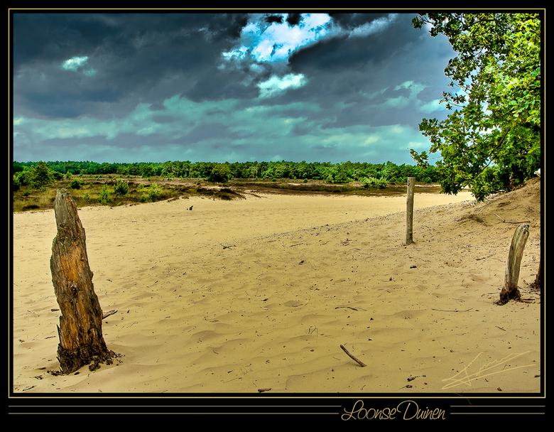 Loonse Duinen - Hier nog een Hdr van de duinen in de zomer<br /> toen was het niet zo koud als nu.<br /> misschien krijg je het er warm van.<br />