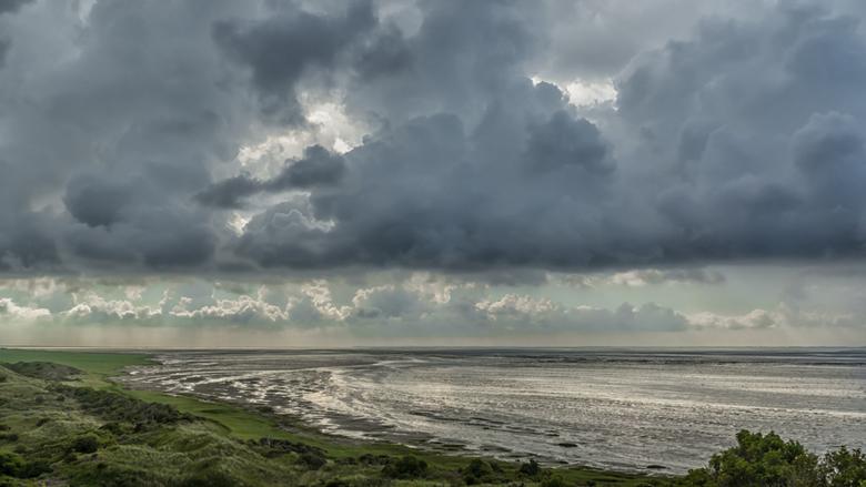 Het Oerd - Aan de oostkant van Ameland heb je een mooi uitzichtpunt, het Oerd, met een speciaal natuurgebied. Je kunt er een wandeltocht maken zodat j