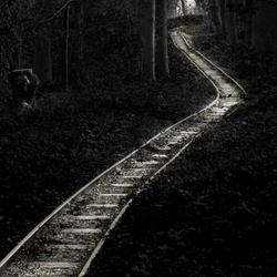Volgende stop: Sprookjesbos