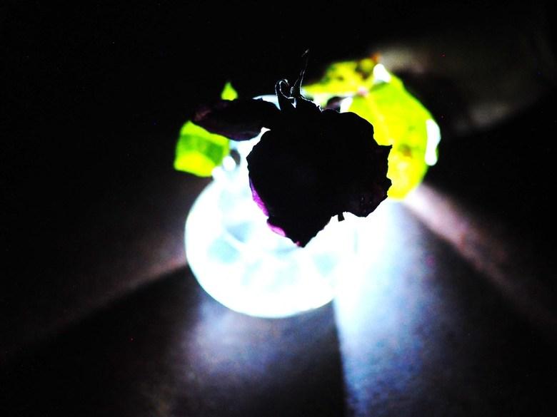 Spelen met licht overig foto van peterpicture zoom
