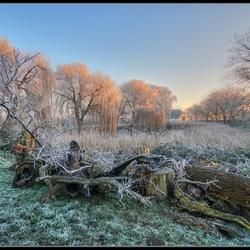Winter in de Betuwe