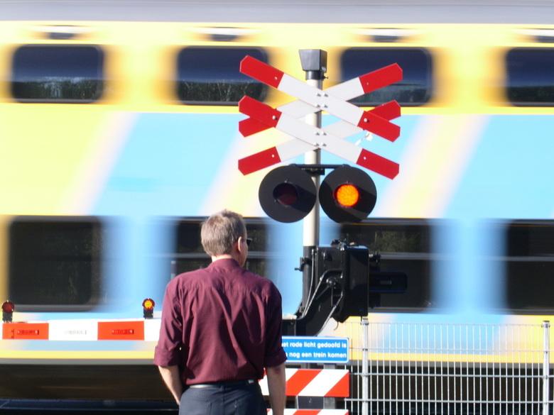As trains go by - Lag ik net op mijn knietjes paddenstoelen te fotograferen toen de trein langskwam. Moest even heel snel omschakelen...