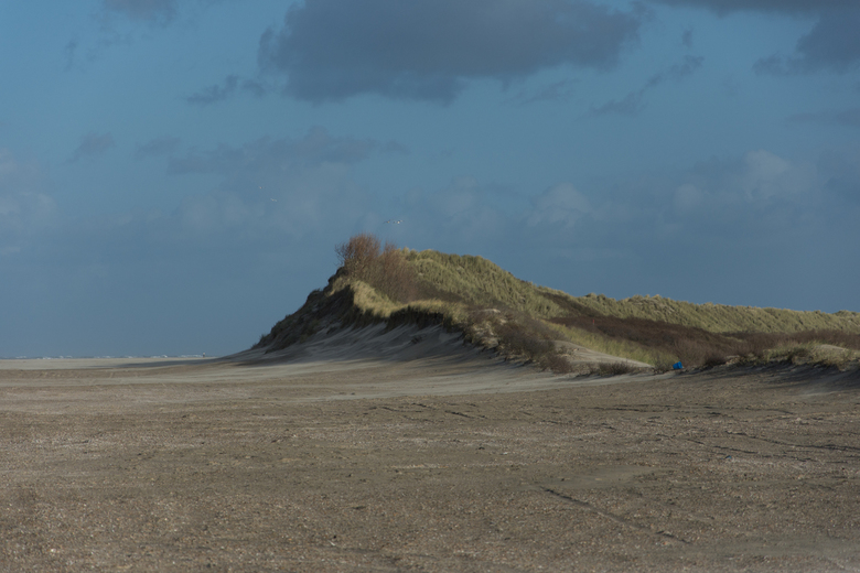 Ameland - Strand met duin op Ameland