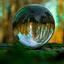 Lens bal