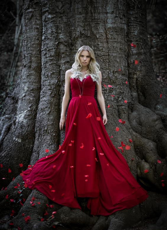 Falling Roses - Bij een geweldige boom een fotoshoot gedaan. De rozenblaadjes werden links en rechts door assistenten in de lucht gegooid. Dus niet er
