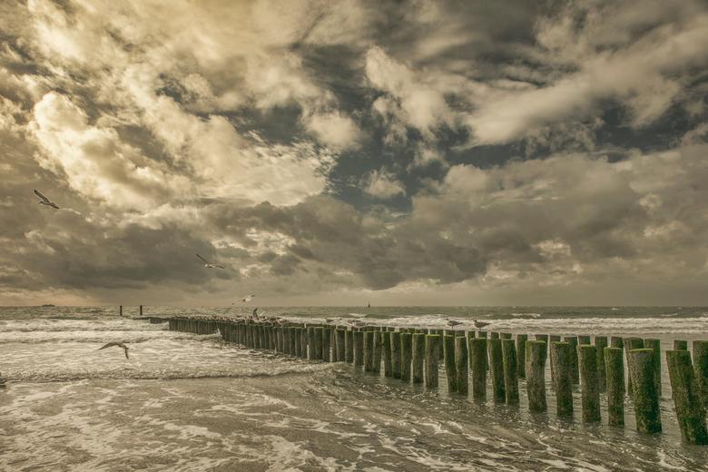 Dishoek - Strand bij Dishoek