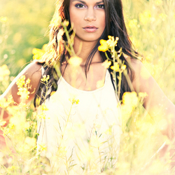 Savannah tussen de gele bloemen