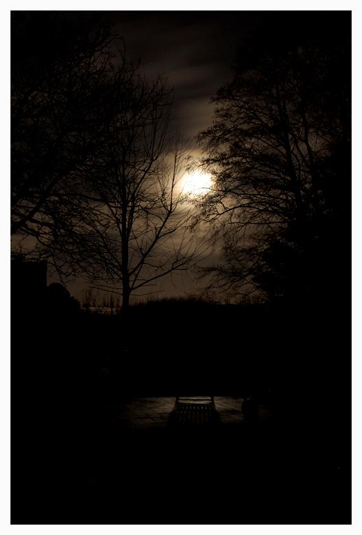 Moonlight Shadow - Deze week was het volle maan. Toen ik in de tuin liep zag ik plots dat het licht van de maan op een tuinstoel viel en een mooie sch