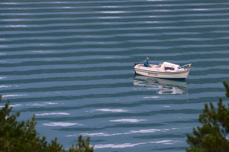 vissen op het meer