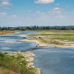 Laag water Maas