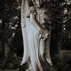 Engel op Oud Eik en Duinen