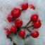 besjes in de sneeuw