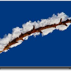 Sneeuw & rijp
