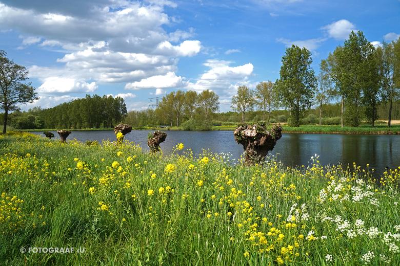 Fotograaf4U - Natuur in de Lente - Fotograaf4U - Natuur in de Lente